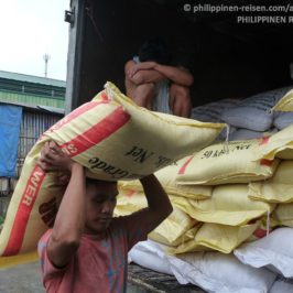 PHILIPPINEN REISEN BLOG - Arbeiter in den Philippinen Foto: Sir Dieter Sokoll KR