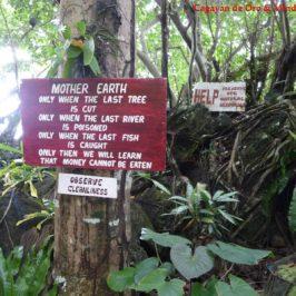 Tour zur Insel Camiguin - Venusmuschel Schutzgebiet