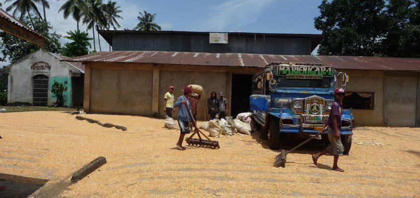 In einer Maismühle auf dem Land