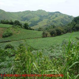 Cagayan de Oro & Mindanao Tours - Auf der Suche nach neuen Wegen