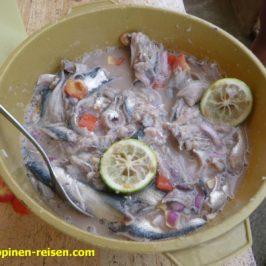 Kinilaw aus preiswertem Tamban Fisch