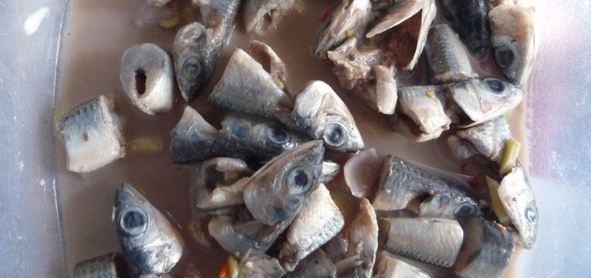 Philippinen - Essen und Trinken - roher Fisch