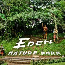 PHILIPPINEN REISEN BLOG - Rückkehr nach Eden