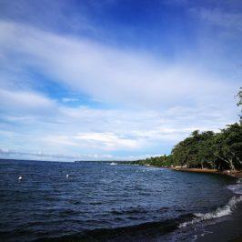 PHILIPPINEN REISEN BLOG - Besuch in Dauin, Negros Oriental