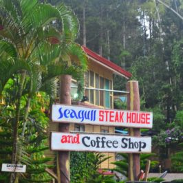 Philippinen Reisen Blog - Seagull Mountain Resort in BuDa