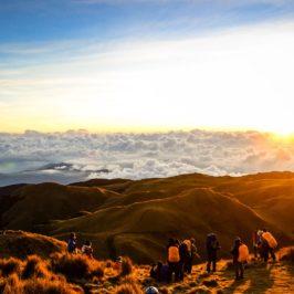 Philippinen Reisen Blog - Die schroffe Schönheit von Mount Pulag