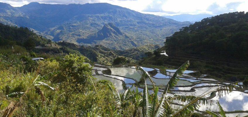 PHILIPPINEN REISEN BLOG - Der Berg Mogao in der Mountain Province