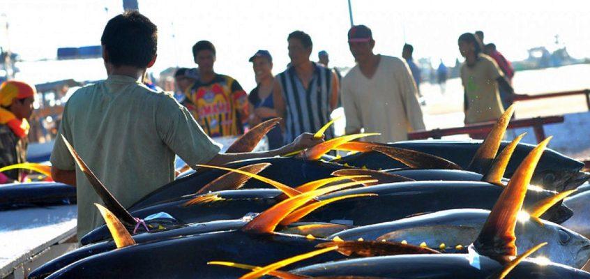 Das Einfangen der Atmosphäre im GenSan Fischereihafen