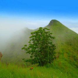 PHILIPPINEN REISEN BLOG - Berwanderung auf den Semilya