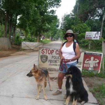 Wanderung mit Hunden von Indahag nach Gusa