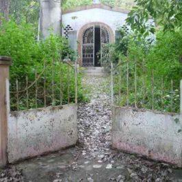 PHILIPPINEN REISEN BLOG - Eine kleine, alte Kapelle verliert ihren Besitzer Foto: Dieter Sokoll