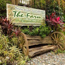 PHILIPPINEN REISEN BLOG - Das bester Garten-Restaurant in Koronadal