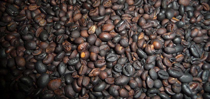 Wir machen unseren Kaffee selber – Teil II