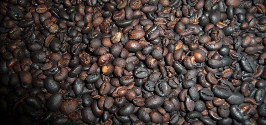 PHILIPPINEN REISEN - Wir machen unseren Kaffee selber - Teil II Foto: Dieter Sokoll