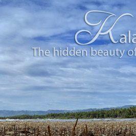PHILIPPINEN REISEN BLOG - Kalamansig - Eines der versteckten Paradiese von Mindanao