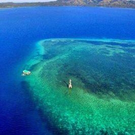 PHILIPPINEN REISEN BLOG - Ausflug zum Meeres- und Fischschutzgebiet in Looc