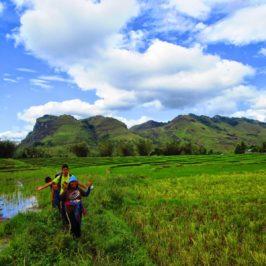 PHILIPPINEN REISEN BLOG - Wanderung auf den Berg Palaopao in Manolo Fortich - Sumilao in der Provinz Bukidnon