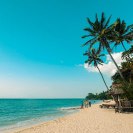 PHILIPPINEN BLOG - Am Lambug Beach in Badian