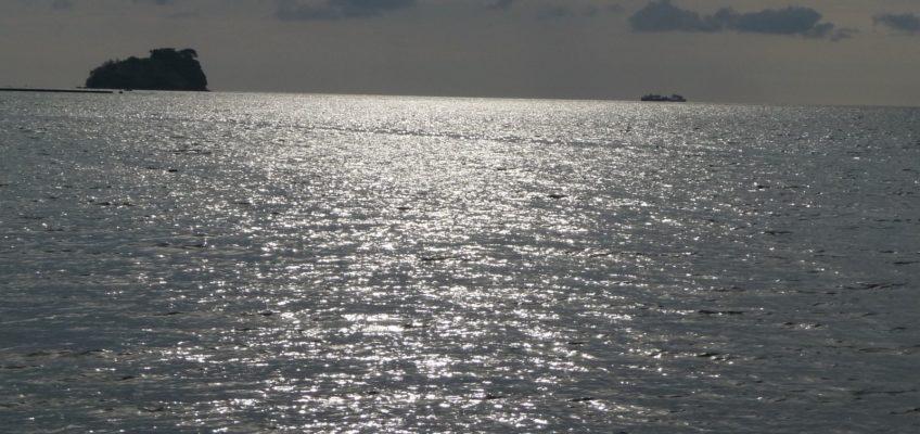 PHILIPPINEN REISEN BLOG - Meeresfrüchte Foto: Sir Dieter Sokoll KR