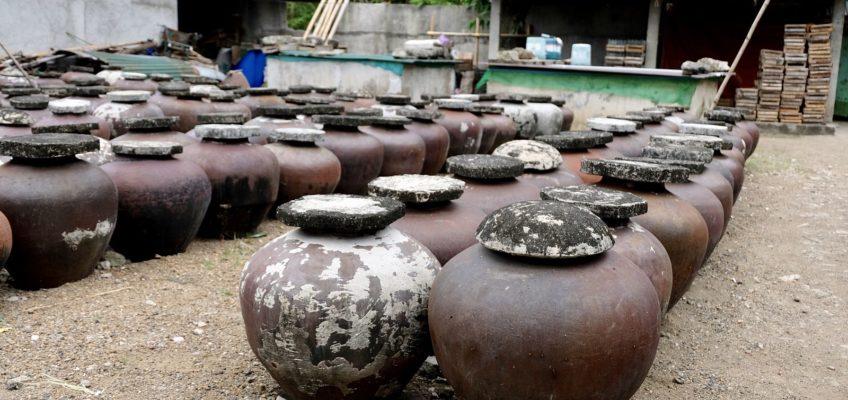 PHILIPPINEN REISEN BLOG - 5 Spezialtitäten aus Batangas