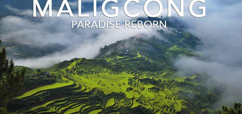 REISEZIELE: Maligcong Reisterrassen