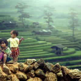 PHILIPPINEN REISEN BLOG - Unglaubliche Zwillinge - Reisterrassen