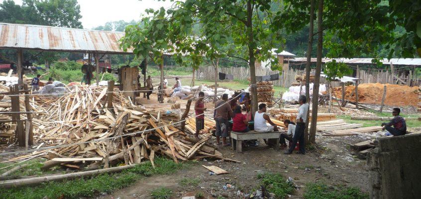 Besuch einer Sägemühle mit Holzplatz