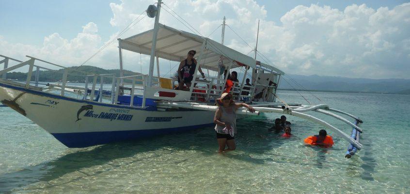 Tagesausflug zu den Delphinen und Sandbänken von Bais