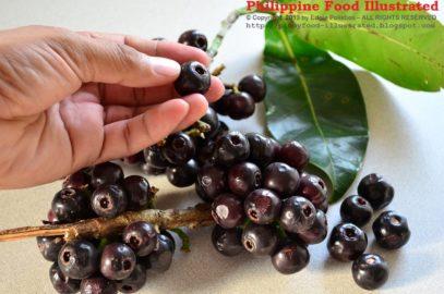 PHILIPPINEN BLOG - UNBEKANNTE PHILIPPINISCHE FRÜCHTE - Lipote