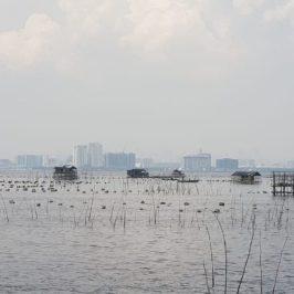 PHILIPPINEN BLOG - Muschel- und Austernfarm in Bacoor