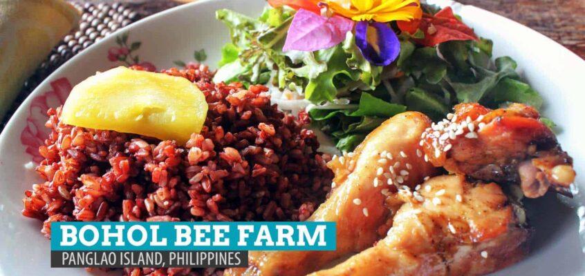 Bohol Bee Farm: Ein bienenschönes Essenserlebnis auf der Insel Panglao