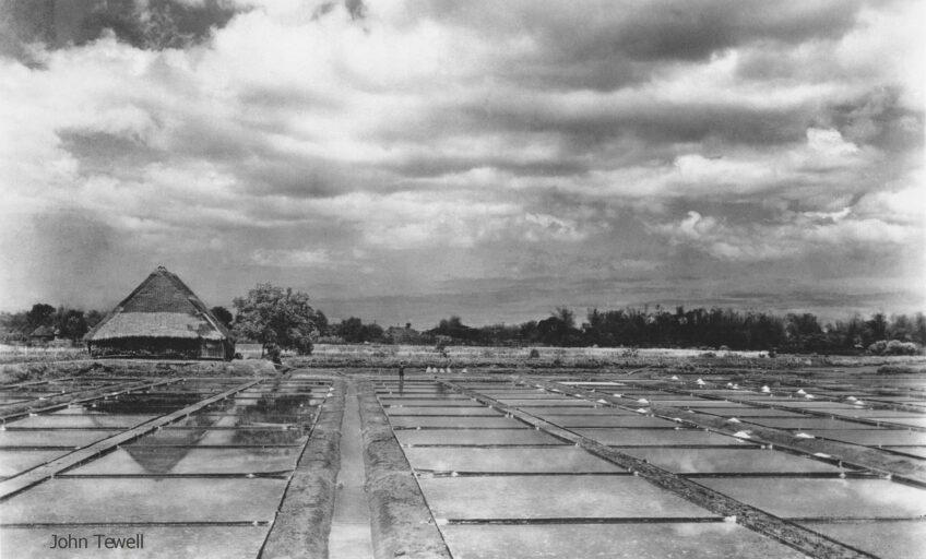 PHILIPPINEN BLOG - GESCHICHTE: Salzbetten / manuelle Salzgewinnung