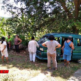 PHILIPPINEN BLOG - Besichtigung eines ländlichen Grundstücks Foto von Sir Dieter Sokoll für PHILIPPINEN MAGAZIN