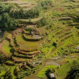 PHILIPPINEN BLOG - Die Reisterrassen von Luzon