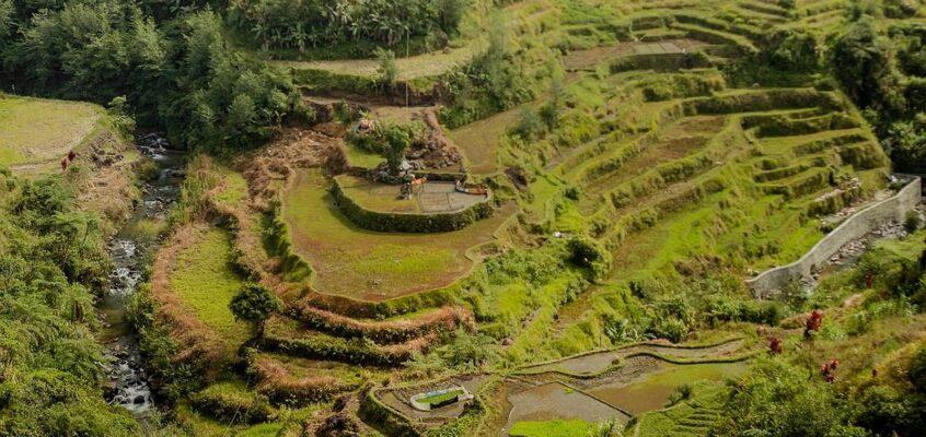 Die philippinischen Reisterrassen