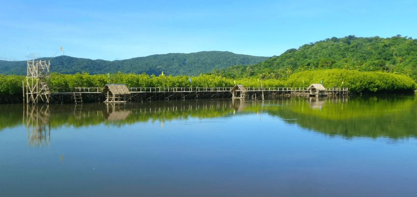 PHILIPPINEN B:OG - Bantalay Mangrove Eco Park