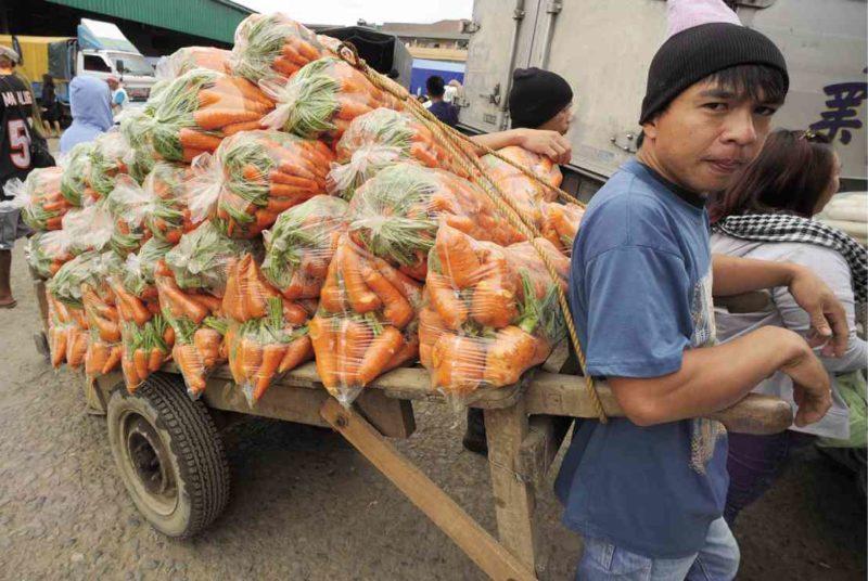 PHILIPPINEN REISEN - ORTE - Die Provinz BenguetPHILIPPINEN REISEN - ORTE - Die Provinz Benguet