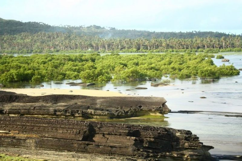PHILIPPINEN REISEN - INSELN - INSELN in den VISAYAS - Die Insel Biri