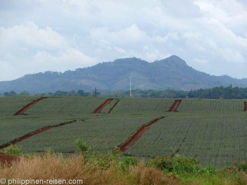 PHILIPPINEN REISEN- ORTE - BUKIDNON - Die Provinz Bukidnon