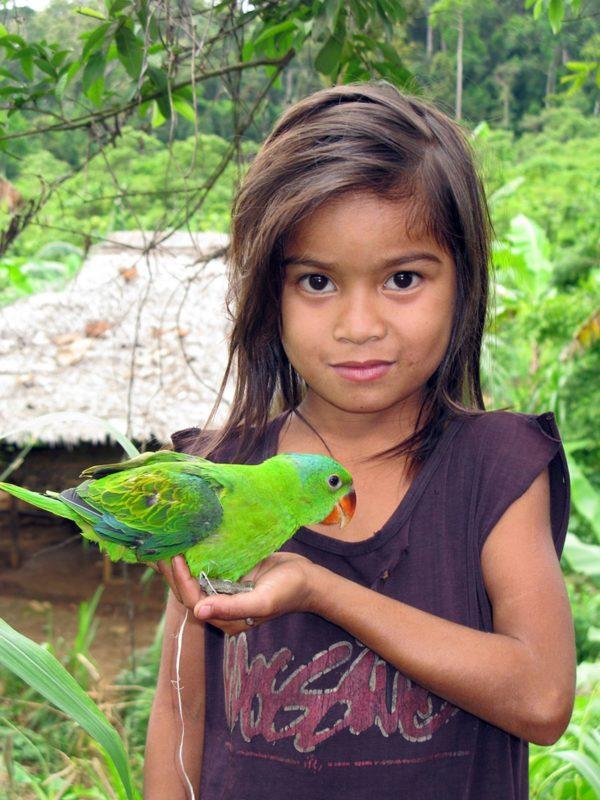 PHILIPPINEN REISEN - ORTE - Die Provinz Palawan