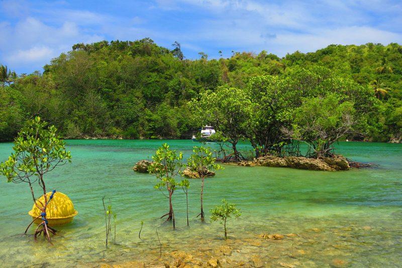 PHILIPPINEN REISEN - INSELN - INSEL in den VISAYAS - Die Insel Danjugan