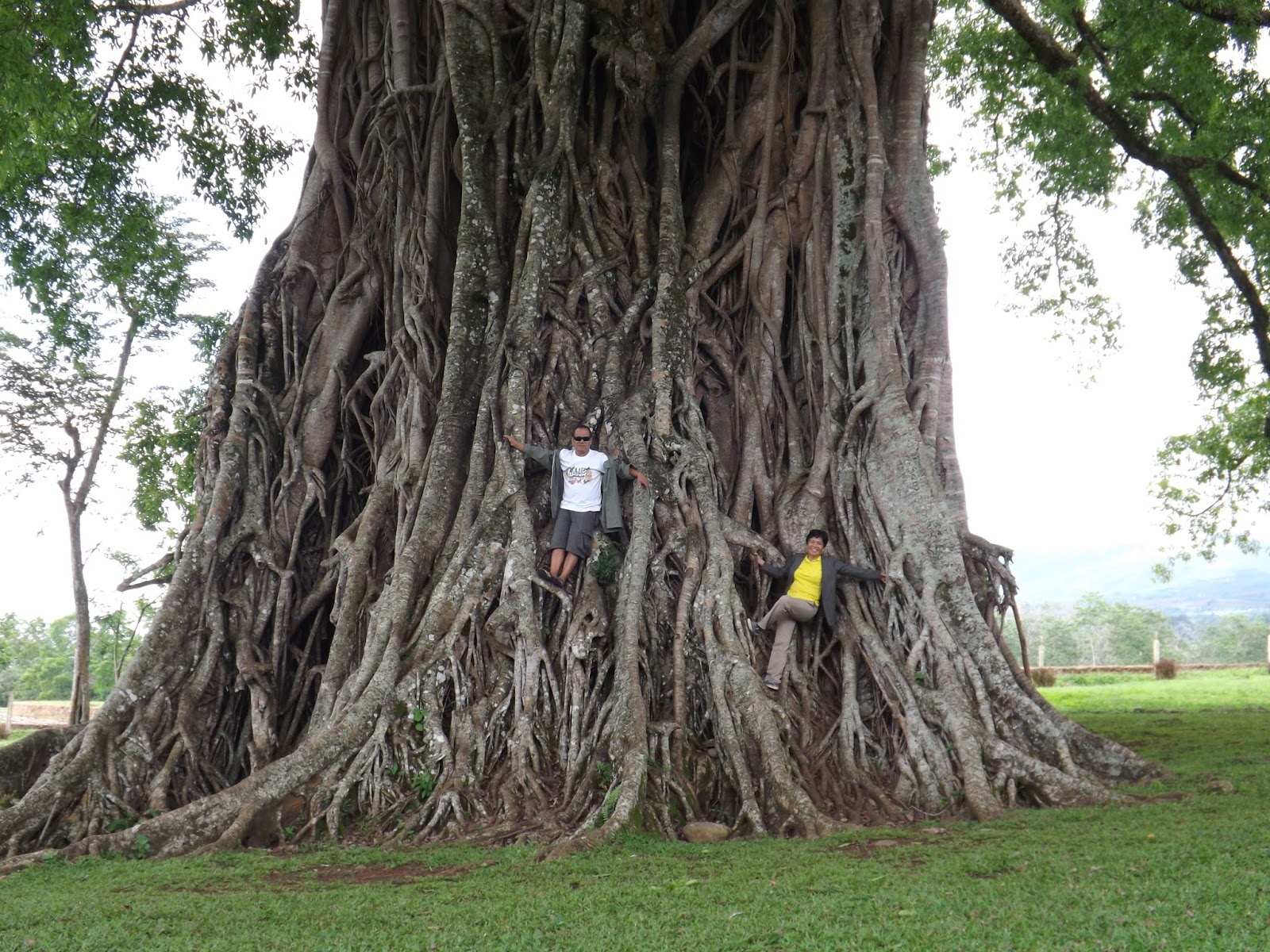 PHILIPPINEN REISEN - ORTE - NEGROS - NEGROS ORIENTAL - Touristische Beschreibung für die Stadt Canlaon